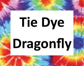 tie-dye-dragonfly
