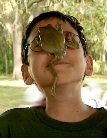 frogface2