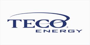 corporate-sponsor-teco-energy-alternate (1)